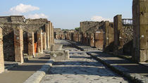 Day Trip from Rome to Naples and Pompeii - Private Tour, Rome, Private Day Trips