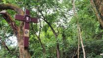 Hong Kong Small-Group Hiking Tour: From Modern City to Ancient Village , Hong Kong, Hiking & Camping