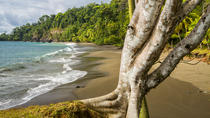 8 Day Costa Rica Natural Wonders Adventure, San Jose