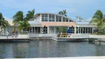 West Grand Cayman Highlights Tour, Cayman Islands, Bus & Minivan Tours