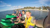 Half-Day Guided Kayak Tour of Martha Cove from Rosebud West, Mornington Peninsula, Kayaking & ...