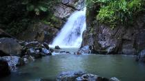 El Yunque Rainforest Guided Hiking with Waterfall Tour , San Juan, Hiking & Camping