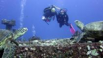 Oahu Certified SCUBA Adventure From Kewalo Basin, Oahu, Scuba & Snorkelling