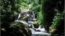 Trekking Cuc Phuong National Park Full-Day Private Tour, Hanoi, Day Trips
