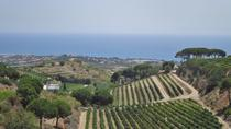 Sailing and Vineyard Guided Tour from Barcelona, Barcelona, Day Trips