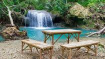 Kawasan Falls Day Tour from Cebu, Cebu, Day Trips