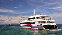 Bangkok to Koh Samui Including Coach and High Speed Catamaran, Bangkok, Bus Services