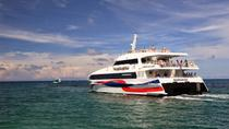 Bangkok to Koh Tao Transfer by Coach and High Speed Catamaran, Bangkok, Bus Services