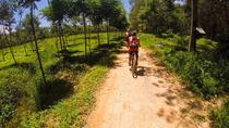 Krabi Countryside Eco Cycling Tour - Multiple Levels, Krabi