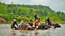 Elephant Village and Mahout Experience Day Tour , Luang Prabang, Full-day Tours