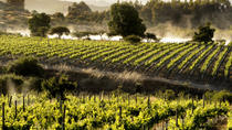 Colchagua Valley Wine Tour from Santiago, Santiago, Wine Tasting & Winery Tours