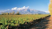 Maipo Valley Wineries Tour from Santiago, Santiago, Wine Tasting & Winery Tours
