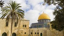 Full-Day Trip of Jerusalem and Bethlehem from Tel Aviv, Tel Aviv, Day Trips