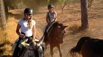 Horse Riding Excursion from Seville, Seville