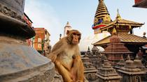 Explore around Kathmandu City, Kathmandu, City Tours