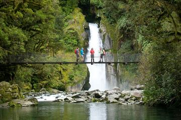 Te Anau Tours, Travel & Activities, South Island, New Zealand