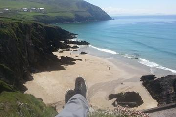 Tralee Tours, Travel & Activities