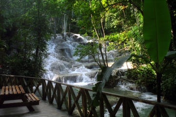 Dunn's River Falls and Ocho Rios Shopping Tour from Runaway Bay