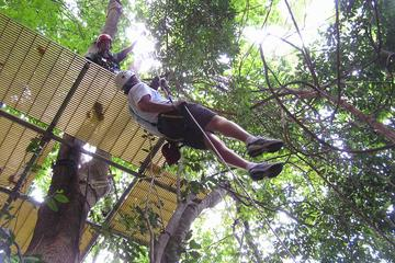 Canopy Zip Line and Safari Tour from Falmouth