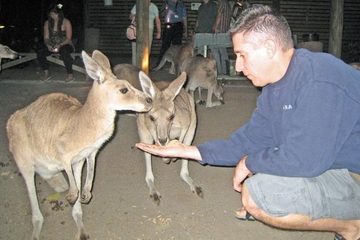 Safari und Grillparty im Cairns Night Zoo
