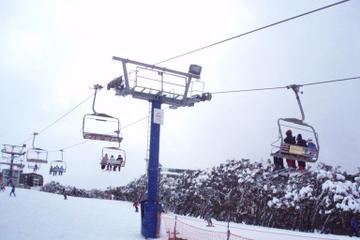 Mt Buller Day Trip with Ski or Snowboard Lesson or Unlimited Lift Pass