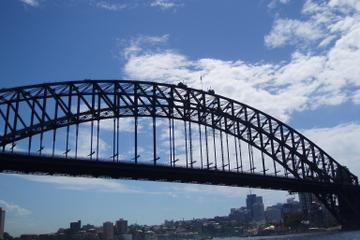 Sydney in Style: Lunch Cruise, Afternoon Sightseeing and Dinner at Summit Restaurant