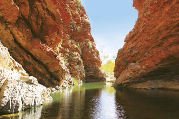 West MacDonnell Ranges Half-Day Tour with Optional Alice Springs Desert Park