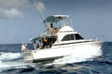 Deep sea fishing from st lucia st lucia viator for Deep sea fishing st lucia
