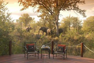 3-Day Kruger National Park Luxury Safari from Johannesburg