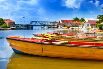 ALL Negril Tours, Travel & Activities