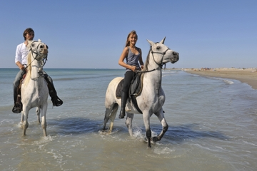Montego Bay Shore Excursion: Dunn's River Falls and Horseback Riding Tour
