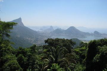Tijuca Rain Forest Jeep Tour from Rio de Janeiro