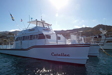 Happy hour cruise catalina island viator for Flying fish happy hour