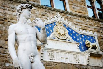 Florence Super Saver: Skip-the-Line Renaissance Walking Tour and Accademia Gallery plus Chianti Wine Tasting