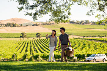 Yarra Valley Wine Tasting & Winery Tours