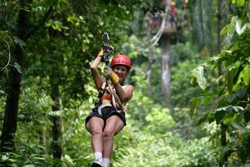 Fly Along on a Zipline Adventure!