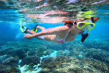 St Maarten Sailing and Snorkeling Tour: Tintamarre Island, Creole Rock and Lunch in Grand Case