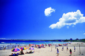 2-Day Kenting National Park and Kaohsiung City Tour with High-Speed Train Experience