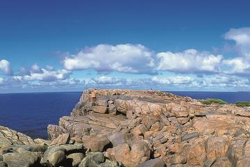 4-Day Tour from Perth Including Margaret River, Valley of the Giants Tree Top Walk, Albany and Wave Rock