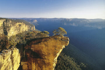 See Australia's most famous native animals in their natural habitat on a full-day tour from Sydney. In a comfortable 4WD, explore the Southern Highlands with a naturalist guide to look for koalas, kangaroos, platypus, emus, wombats and other critters in the wild, just 90 minutes outside of the city.