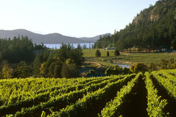 Private Tour: 3-Day Wine-Tasting Tour Through Victoria and the Gulf Islands