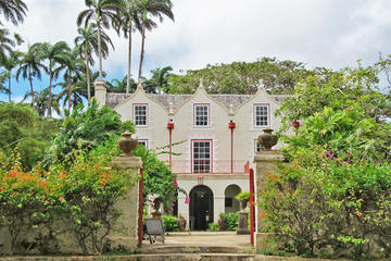 Full-Day Tour of Bridgetown Highlights Including Harrison's Cave, Bathsheba Beach, and More