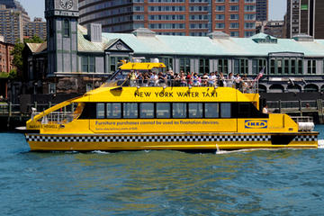 Viator Exclusive: Ultimate New York City Hop-on Hop-off Tour by Bus and Boat