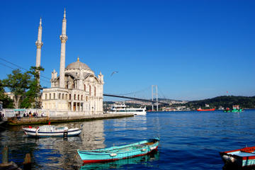 Istanbul Shore Excursion: Bosphorus Cruise and Istanbul Egyptian Bazaar