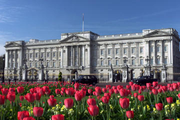 The Royal London Tour including Buckingham Palace