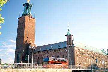 Stockholm Panoramic Sightseeing Tour