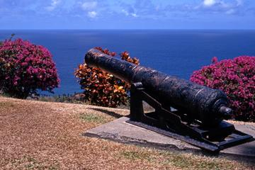 Tobago Island Sightseeing and Plantation Tour