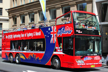 Sydney Shore Excursion: Sydney and Bondi Hop-On Hop-Off Tour
