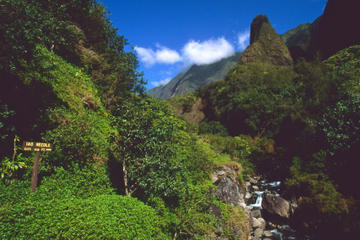 Lahaina Shore Excursion: Tropical Plantation Tour and Iao Valley with Optional Maui Ocean Center