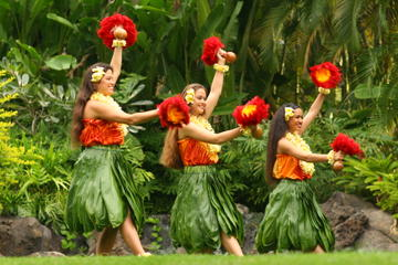 Oahu Shore Excursion: North Shore and Polynesian Cultural Center